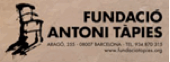 Fundacio Antoni Tapies client Ant Facilities